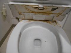 洋式トイレの便座裏の洗浄